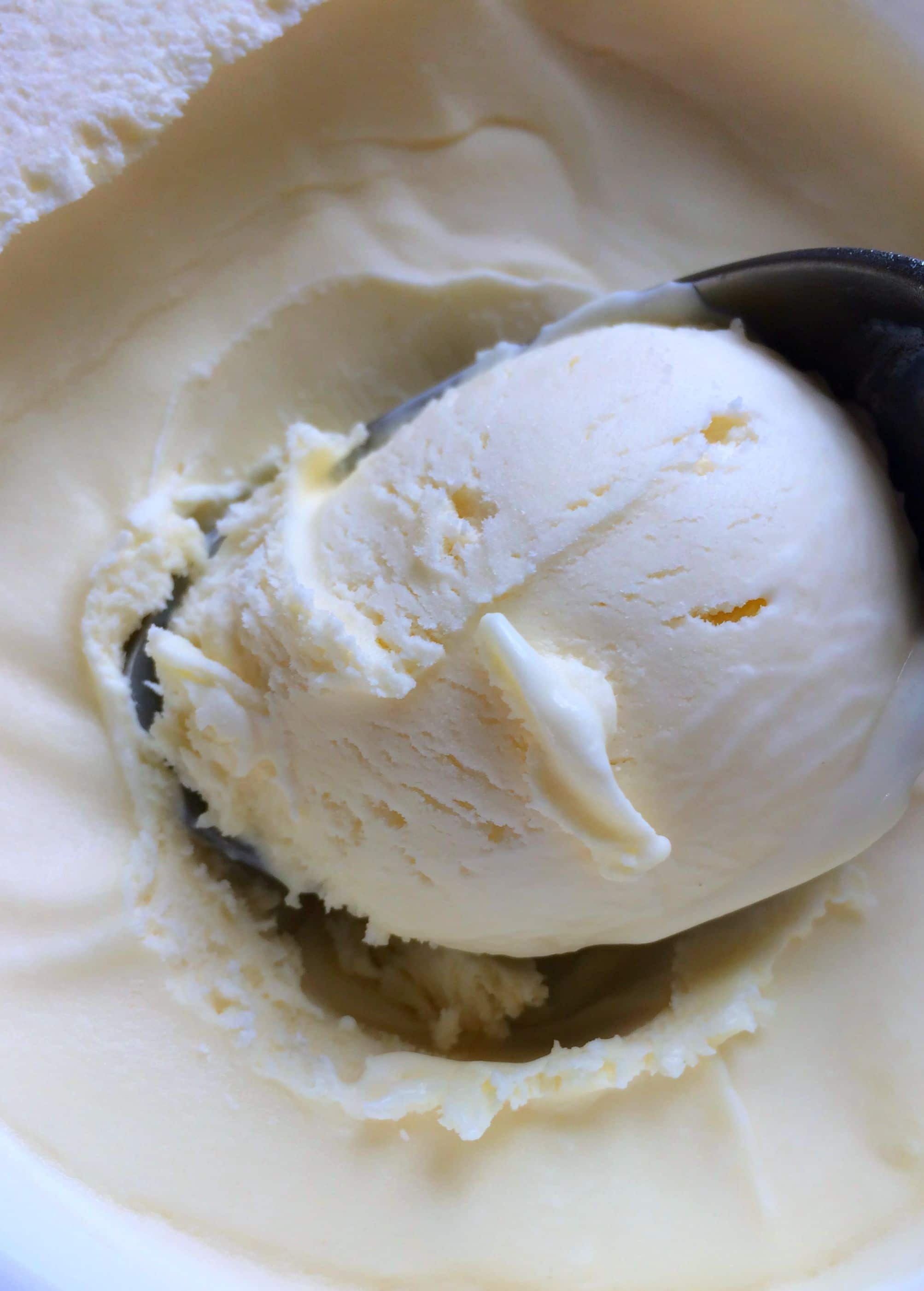 3 ingredients Vanilla Ice Cream easy to make and delicious to eat! gardeninthekitchen.com