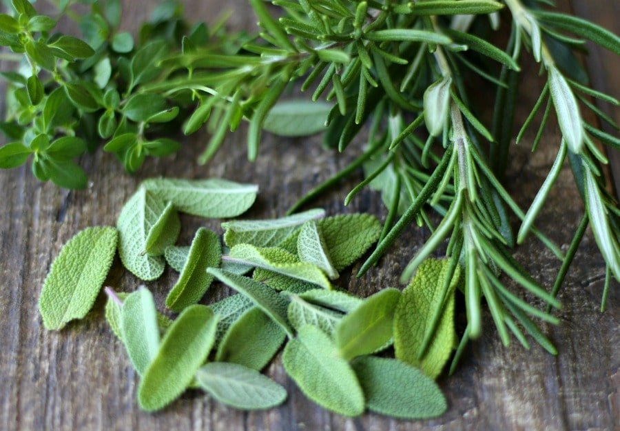 Rosemary-Thyme-Sage-herbs-gardeninthekithen.com