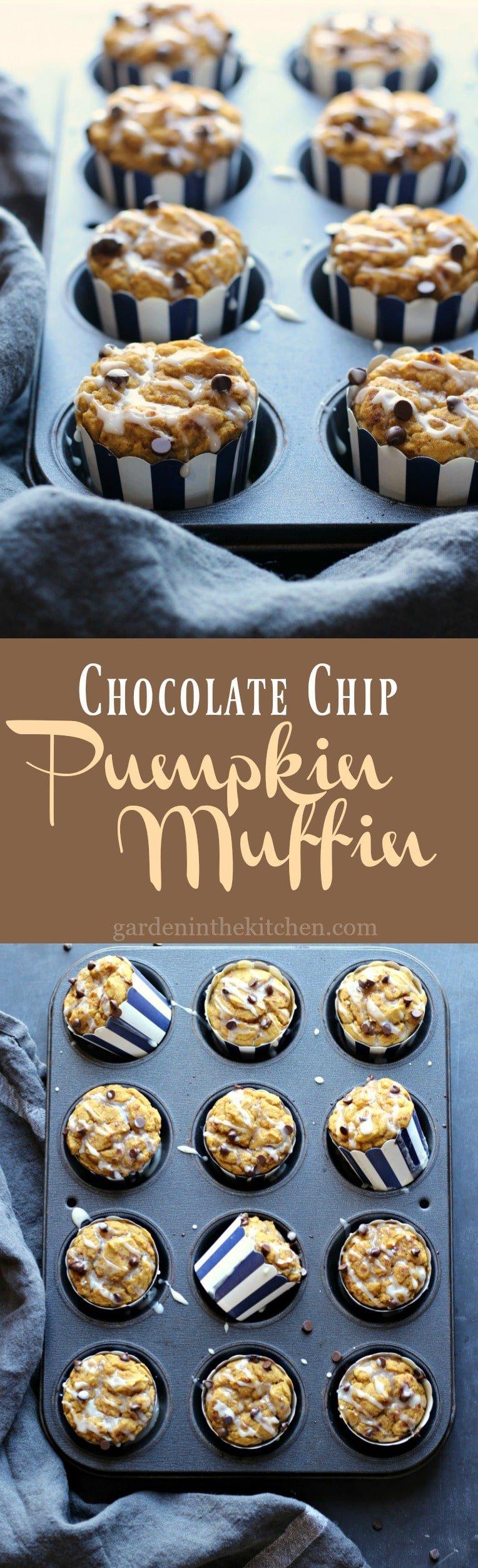 Chocolate Chip Pumpkin Muffin (Gluten-free, Dairy-free) | gardeninthekitchen.com