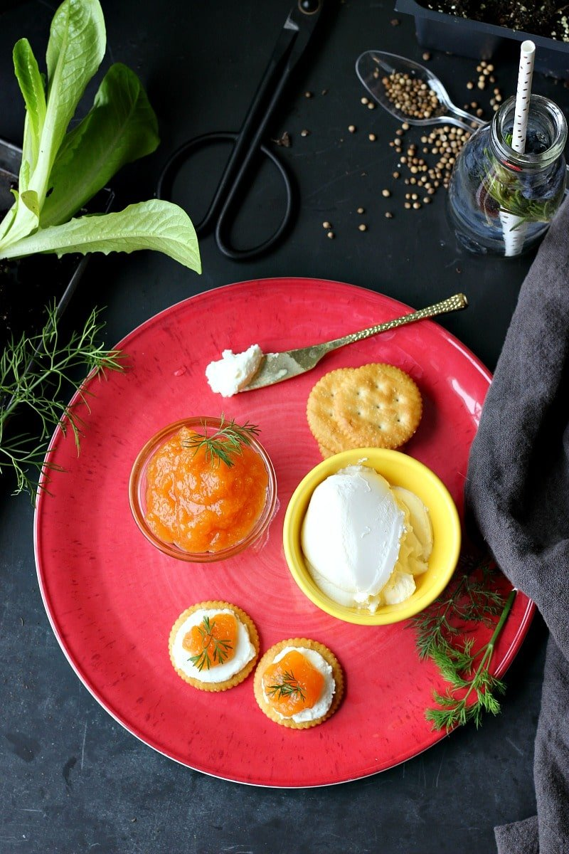 Honey Cantaloupe Jam with Fresh Dill