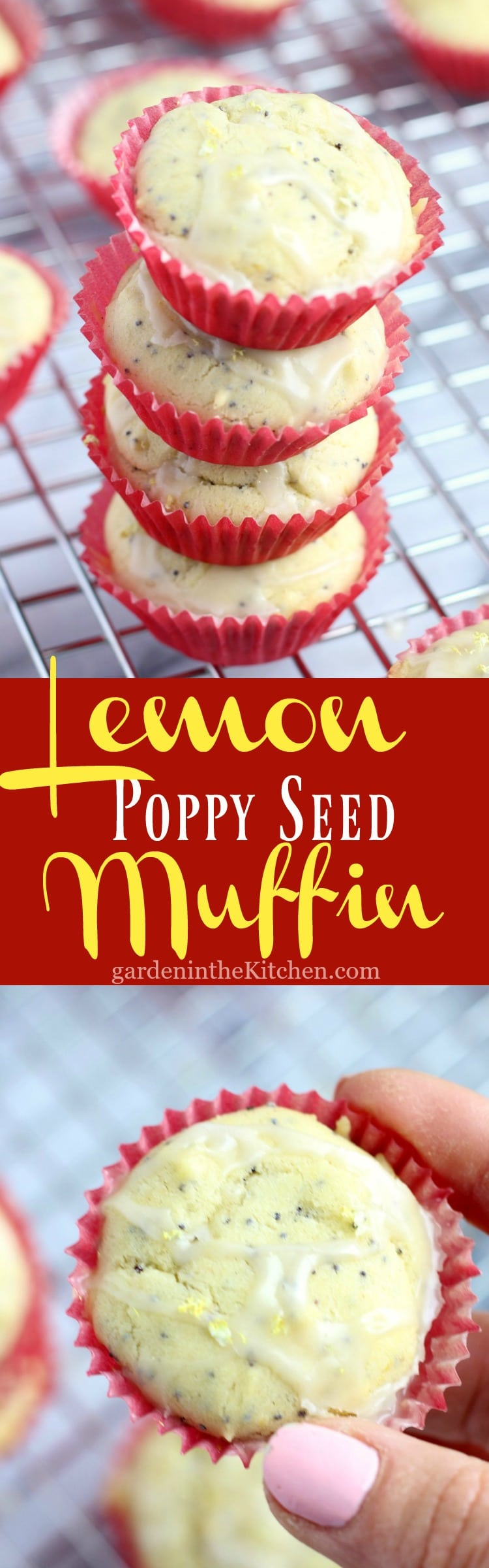 Gluten-free Lemon Poppy Seed Mini Muffin