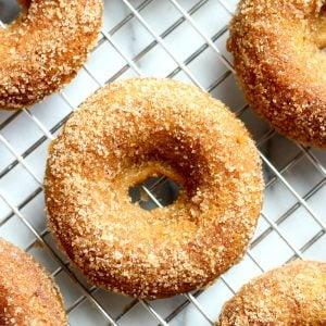 Baked Gluten-Free Apple Cider Donuts