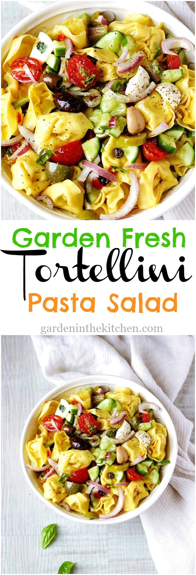 Garden Fresh Tortellini Pasta Salad with fresh veggies, mozzarella cheese and seasoned with a flavorful basil avocado oil dressing! #tortellinipastasalad #pastasalad #tortellini