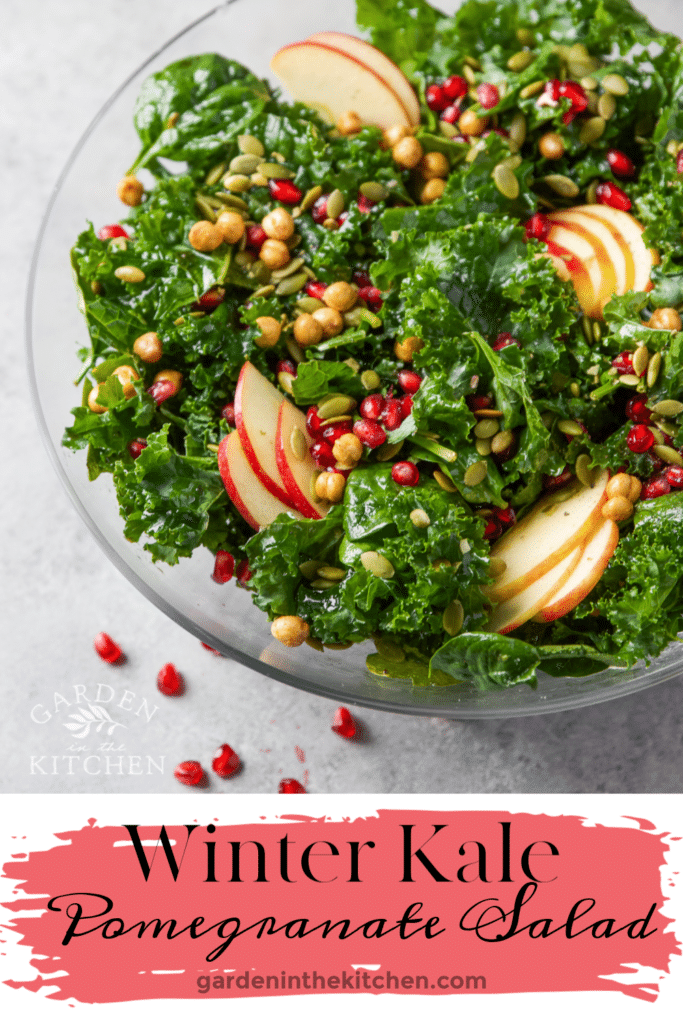 Kale pomegranate salad in a large glass bowl