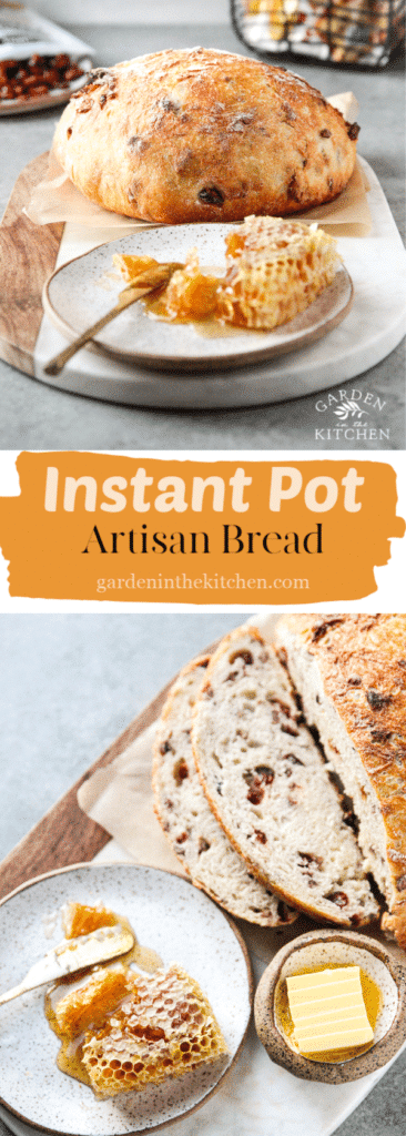 instant pot artisan bread