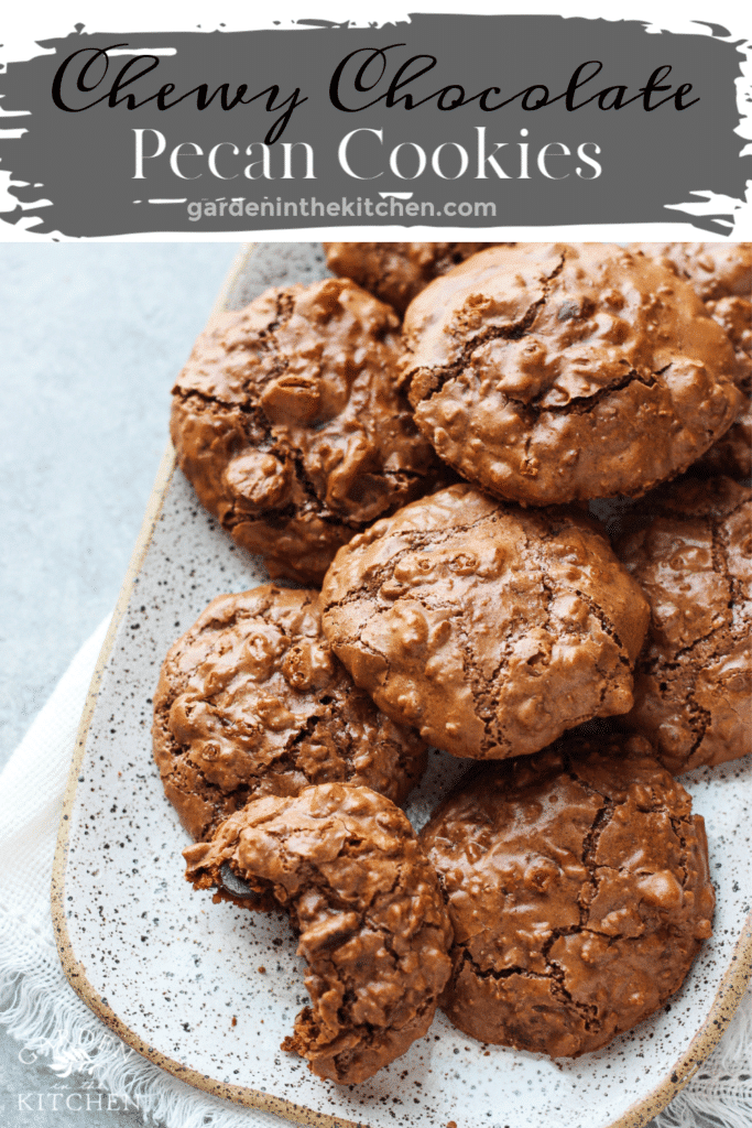 Chewy chocolate pecan cookies on a plate