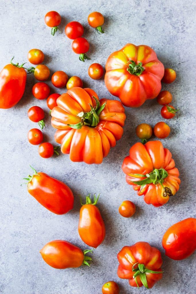 freshly picked garden tomatoes