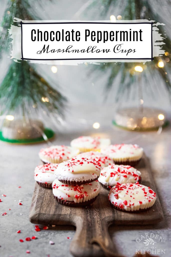 chocolate peppermint marshmallow cups