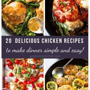 chicken recipe roundup