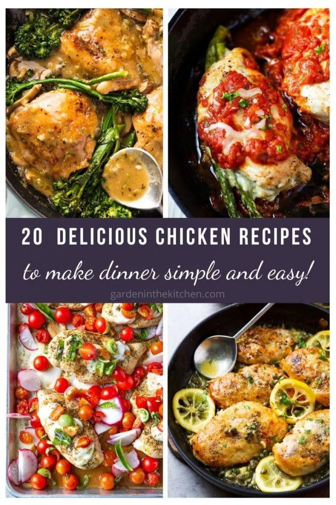chicken recipe roundup
